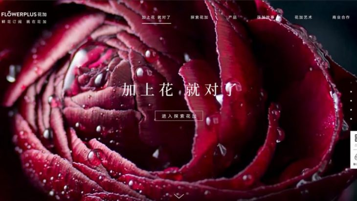 Inside Flowerplus, China's Flower Ecommerce Pioneer
