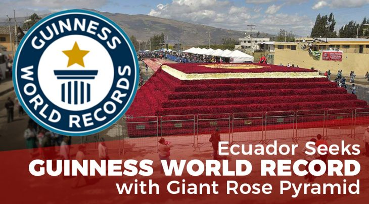 Ecuador Seeks Guinness World Record with Giant Rose Pyramid