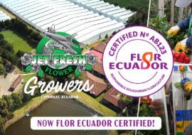 Jet Fresh Flower Growers, S.A. is now Flor Ecuador Certified. Established by Flor Ecuador