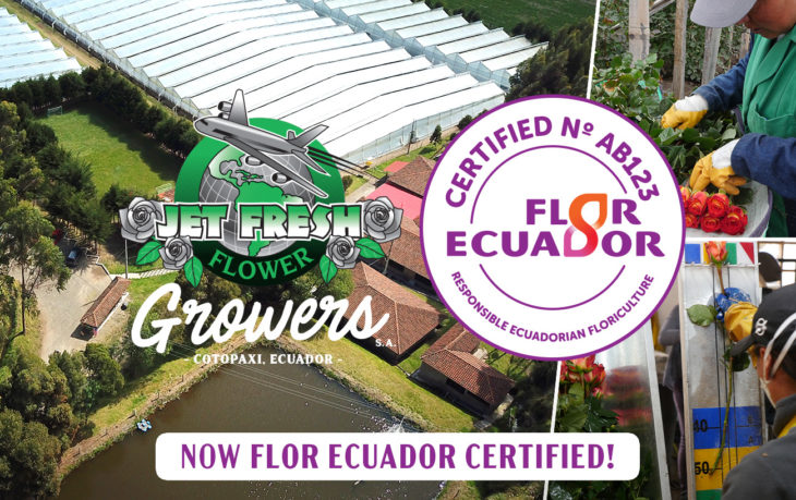 Jet Fresh Flower Growers, S.A. is now Flor Ecuador Certified. Established by Flor Ecuador